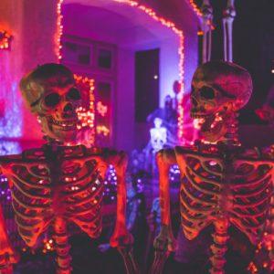 Halloween en CSE La Tacita