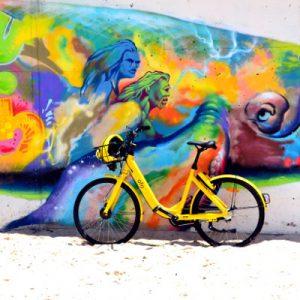4ª Fiesta de la Bicicleta Vallecas. Trofeo del Carmen 2019