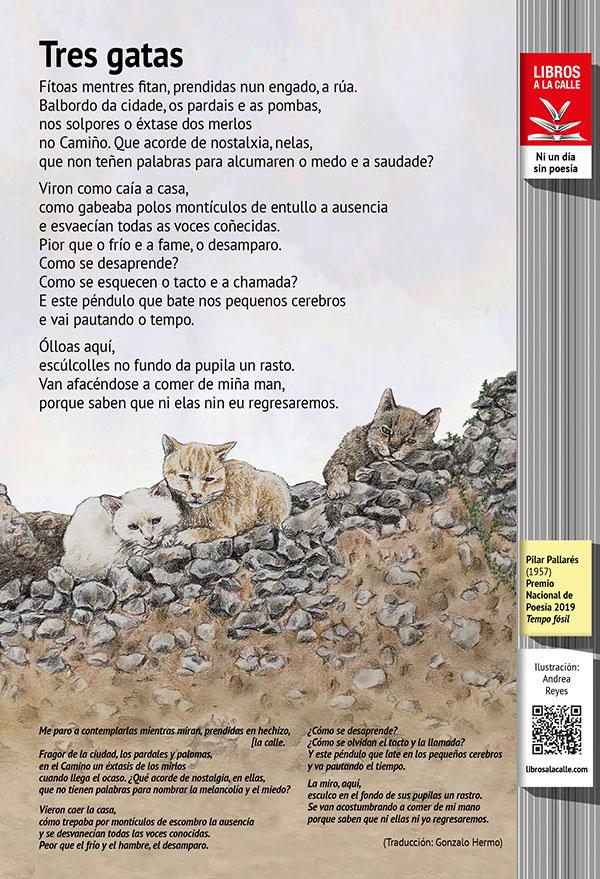 Tres gatas Pilar Pallarés